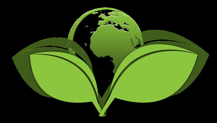 hotel management software, hotel management software, environmental policy, environmental policy, sustainable travel, hotel, software